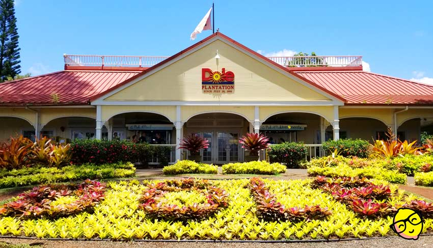 Picture of the main building at the Dole Plantation in Hawaii. The word Dole is spelled out in plants in the front. The building has a red roof and the Dole logo in the center of the roof.